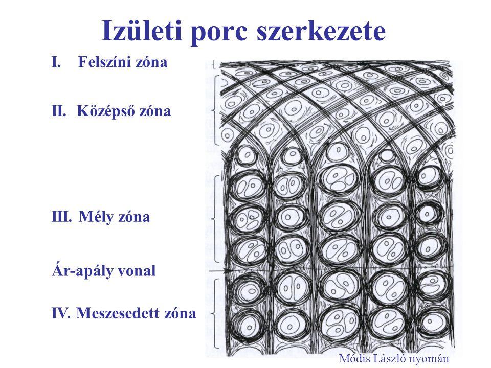 porc regenerációt fokozó gyógyszerek